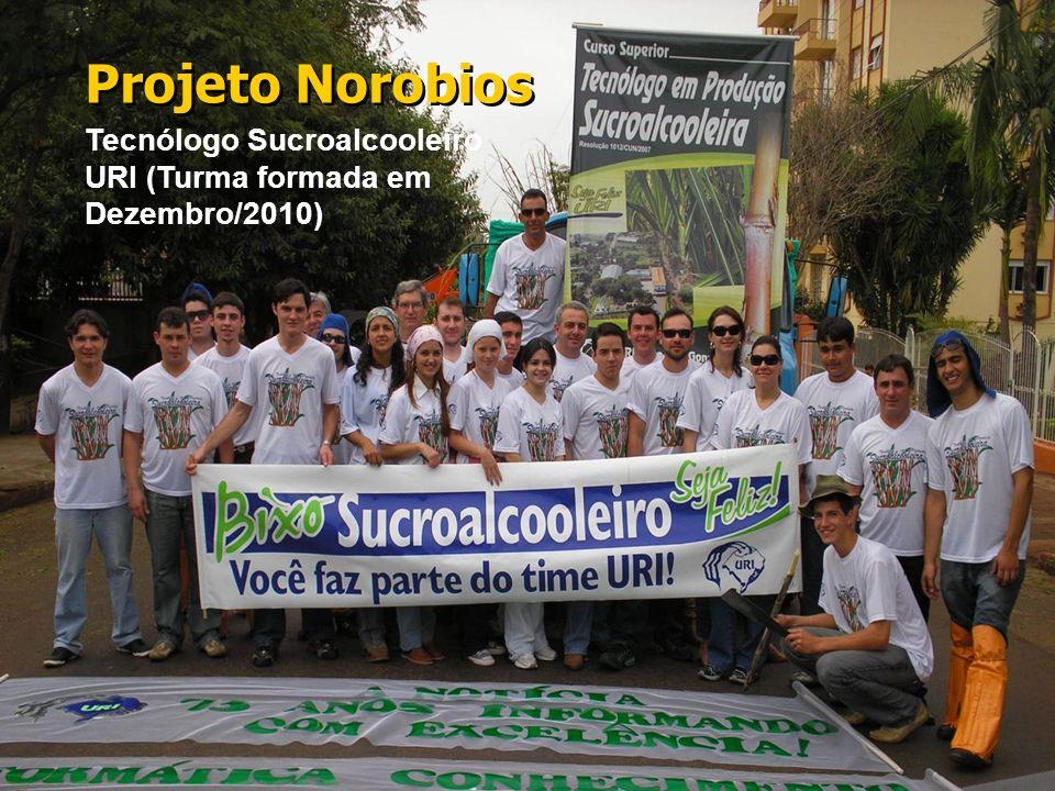 21 Tecnólogo Sucroalcooleiro URI (Turma formada em Dezembro/2010) Projeto Norobios