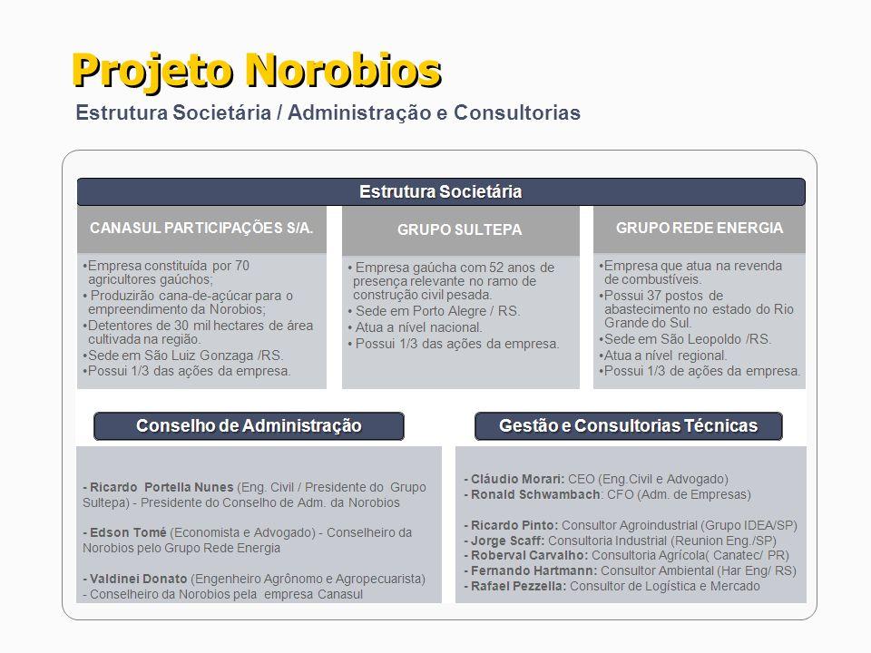 Estrutura Societária / Administração e Consultorias Projeto Norobios
