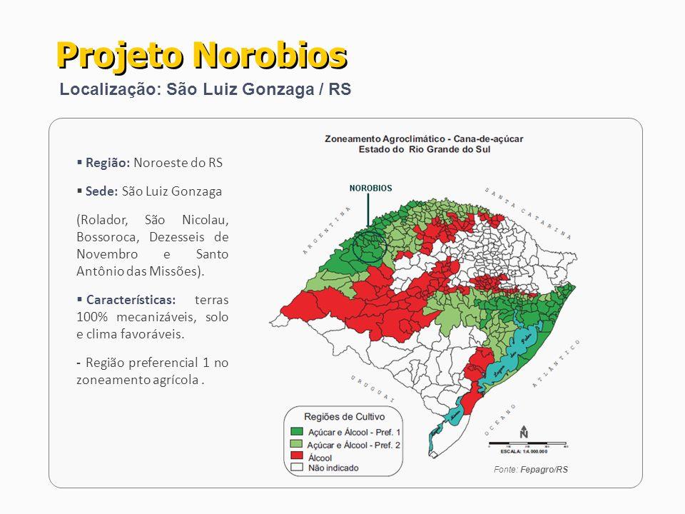 PROCESSAMENTO PROGRAMADO - Produtores de cana com 20.000 ha 1.500.000 t cana/ano PRODUÇÃO INDUSTRIAL - Etanol Hidratado 120 milhões litros/ano - Co-geração de Energia Elétrica (28 MW) 100.000 MWh/ano INVESTIMENTOS - Industriais R$ 250 Milhões - Frota Agrícola (CCT) R$ 70 Milhões Total R$ 320 Milhões Projeto Norobios Porte, Produção e Investimentos