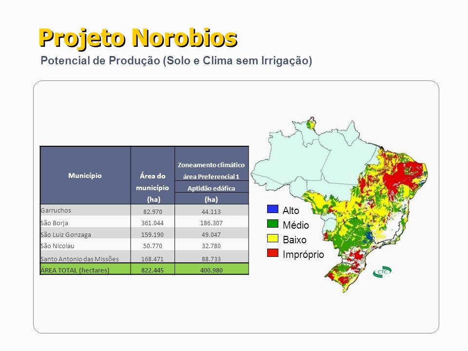 Projeto Norobios Topografia da Região - A legislação estadual do RS não permite as queimadas; - A REGIÃO NOROESTE possui grandes áreas com topografia apta a 100% de MECANIZAÇÃO.