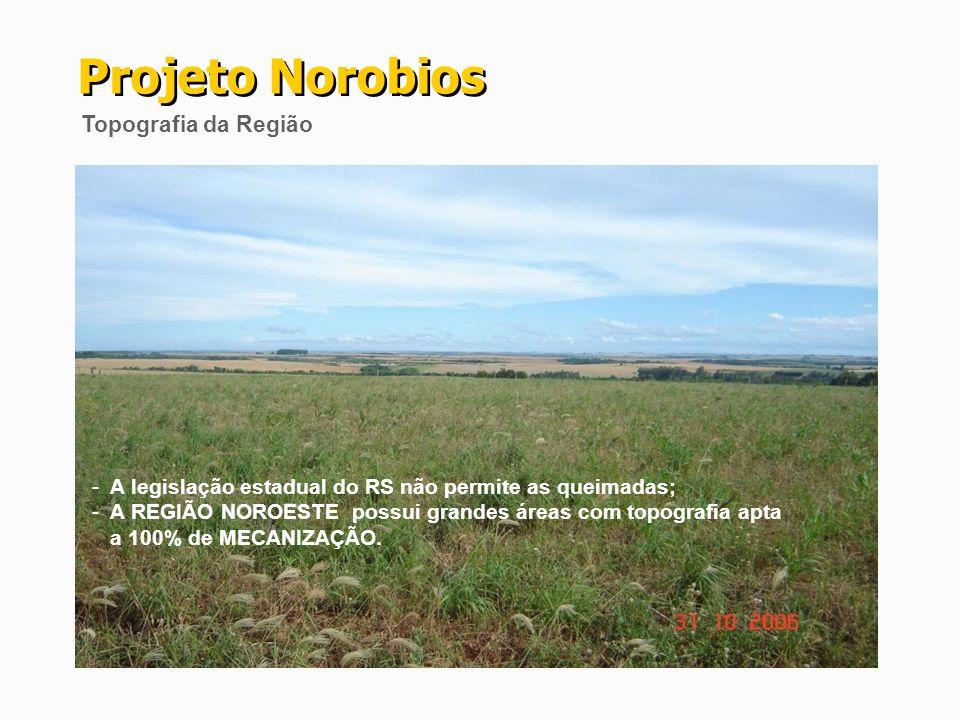 Projeto Norobios Topografia da Região - A legislação estadual do RS não permite as queimadas; - A REGIÃO NOROESTE possui grandes áreas com topografia