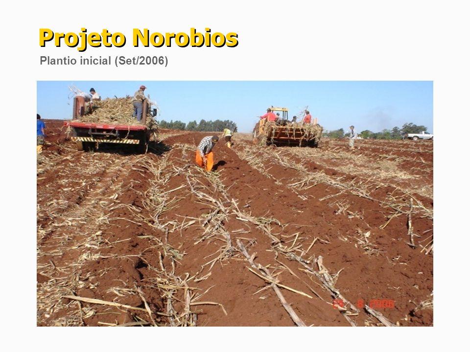 a)Firmados contratos de longo prazo para fornecimento de cana com os agricultores para Fase 1; b)Estudos Topográficos, Geológicos, Arqueológicos, Projeto Básico e Plano Diretor concluídos; c)Reserva hídrica, outorga da água e Licença Ambiental Prévia concedidas; d)Parecer favorável de acesso a rede elétrica (RGE, ELETROSUL e ONS); e)Área da Indústria (54 ha) adquirida (escriturada); f)Portaria 54 do Ministério da Agricultura (abril/09): Inclusão do RS no Zoneamento Nacional para a cultura da Cana-de-açúcar; g)Projeto Agrícola e testes mensais (ano 2008, 2009, 2010 e 2011) da qualidade da matéria-prima realizados na Usina Vale do Ivaí.