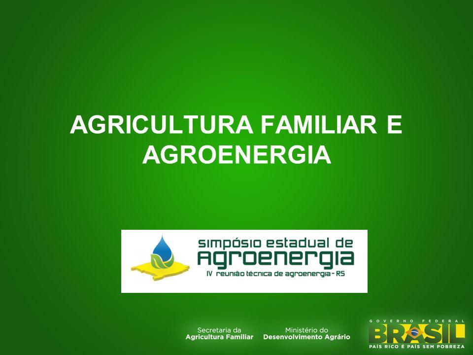 AGRICULTURA FAMILIAR E AGROENERGIA