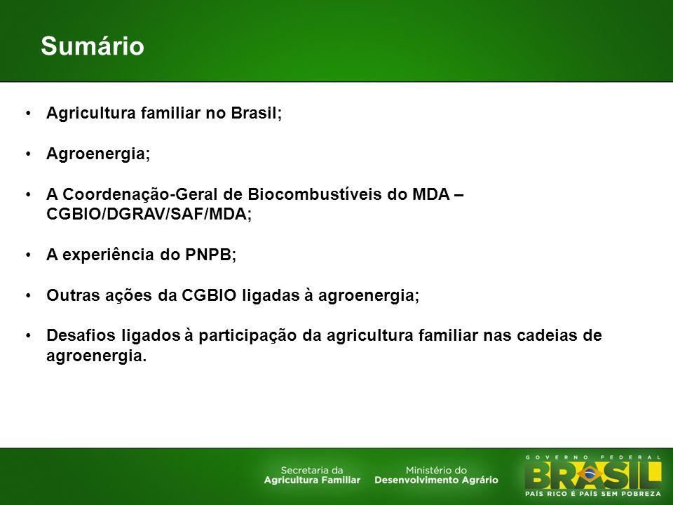 Sumário Agricultura familiar no Brasil; Agroenergia; A Coordenação-Geral de Biocombustíveis do MDA – CGBIO/DGRAV/SAF/MDA; A experiência do PNPB; Outra