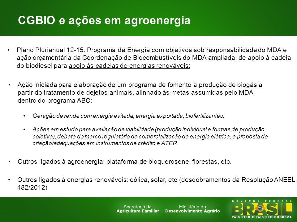 CGBIO e ações em agroenergia Plano Plurianual 12-15: Programa de Energia com objetivos sob responsabilidade do MDA e ação orçamentária da Coordenação
