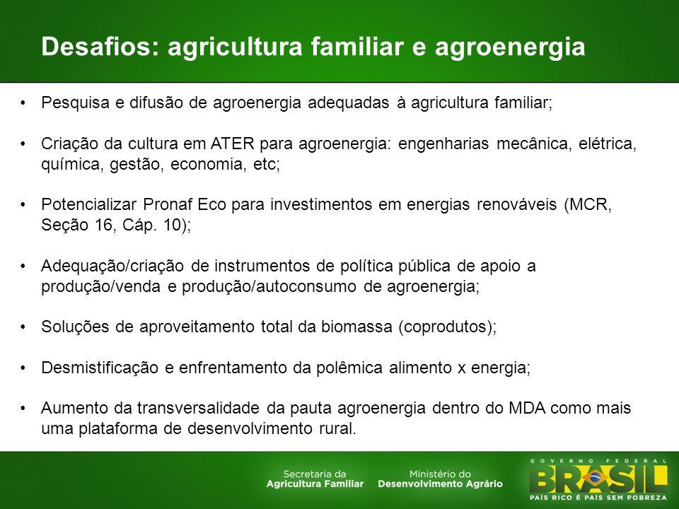 Desafios: agricultura familiar e agroenergia Pesquisa e difusão de agroenergia adequadas à agricultura familiar; Criação da cultura em ATER para agroe