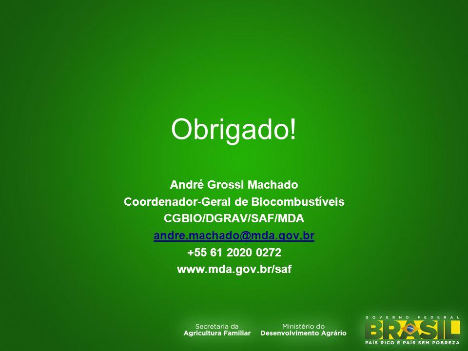 Obrigado! André Grossi Machado Coordenador-Geral de Biocombustíveis CGBIO/DGRAV/SAF/MDA andre.machado@mda.gov.br +55 61 2020 0272 www.mda.gov.br/saf