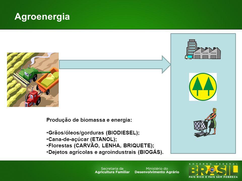 Produção de biomassa e energia: Grãos/óleos/gorduras (BIODIESEL); Cana-de-açúcar (ETANOL); Florestas (CARVÃO, LENHA, BRIQUETE); Dejetos agrícolas e ag
