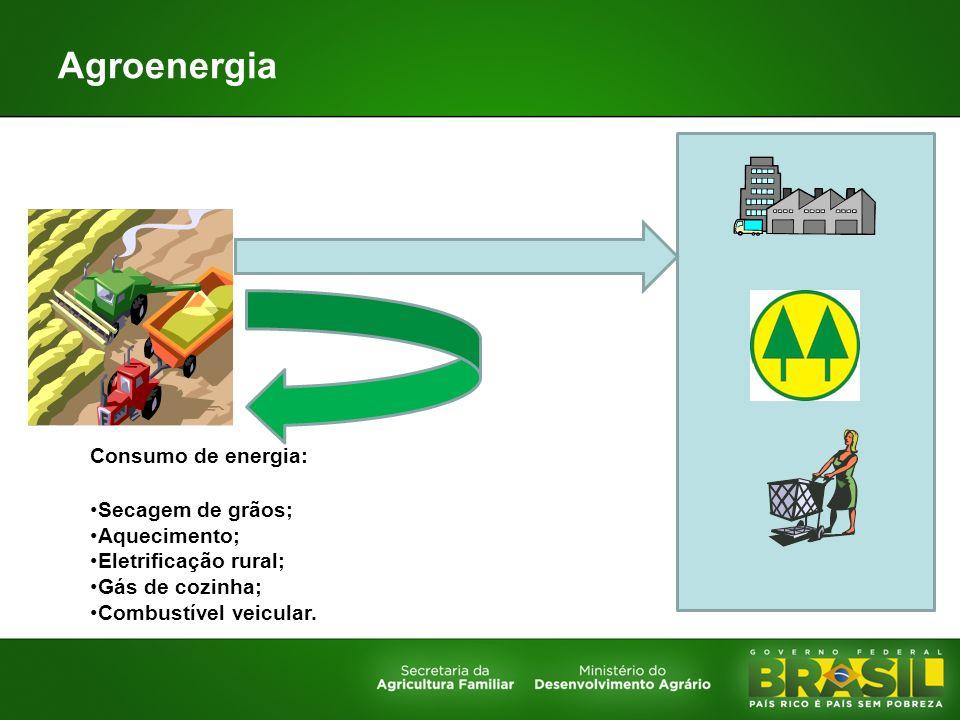 Agroenergia Consumo de energia: Secagem de grãos; Aquecimento; Eletrificação rural; Gás de cozinha; Combustível veicular.