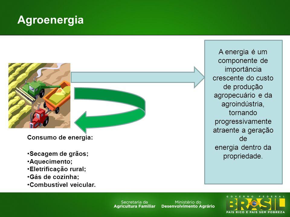 Agroenergia Consumo de energia: Secagem de grãos; Aquecimento; Eletrificação rural; Gás de cozinha; Combustível veicular. A energia é um componente de