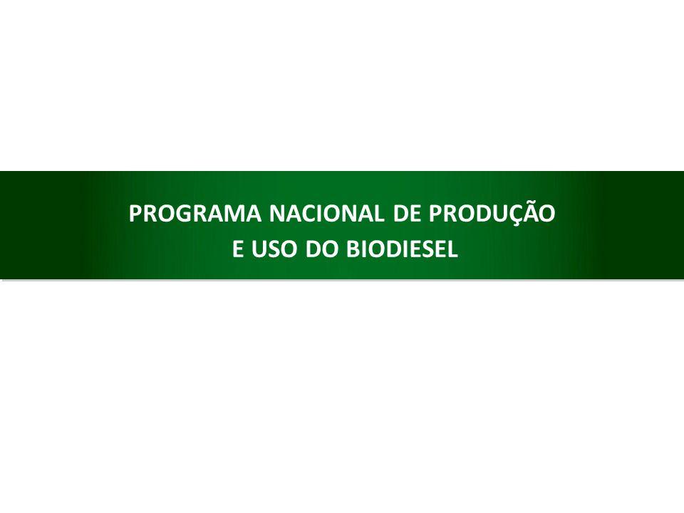 PROGRAMA NACIONAL DE PRODUÇÃO E USO DO BIODIESEL