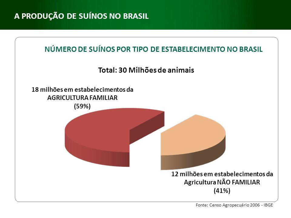 NÚMERO DE SUÍNOS POR TIPO DE ESTABELECIMENTO NO BRASIL Total: 30 Milhões de animais Fonte: Censo Agropecuário 2006 - IBGE 12 milhões em estabeleciment
