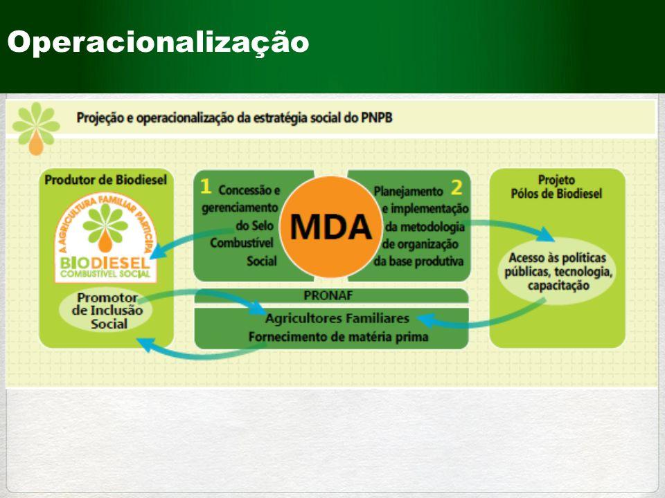 220 mil são da Agricultura NÃO FAMILIAR (15%) 1,2 milhões são da AGRICULTURA FAMILIAR (85%) NÚMERO DE ESTABELECIMENTOS COM PRODUÇÃO DE SUÍNOS NO BRASIL Total: 1,4 Milhões de estabelecimentos Fonte: Censo Agropecuário 2006 - IBGE A PRODUÇÃO DE SUÍNOS NO BRASIL