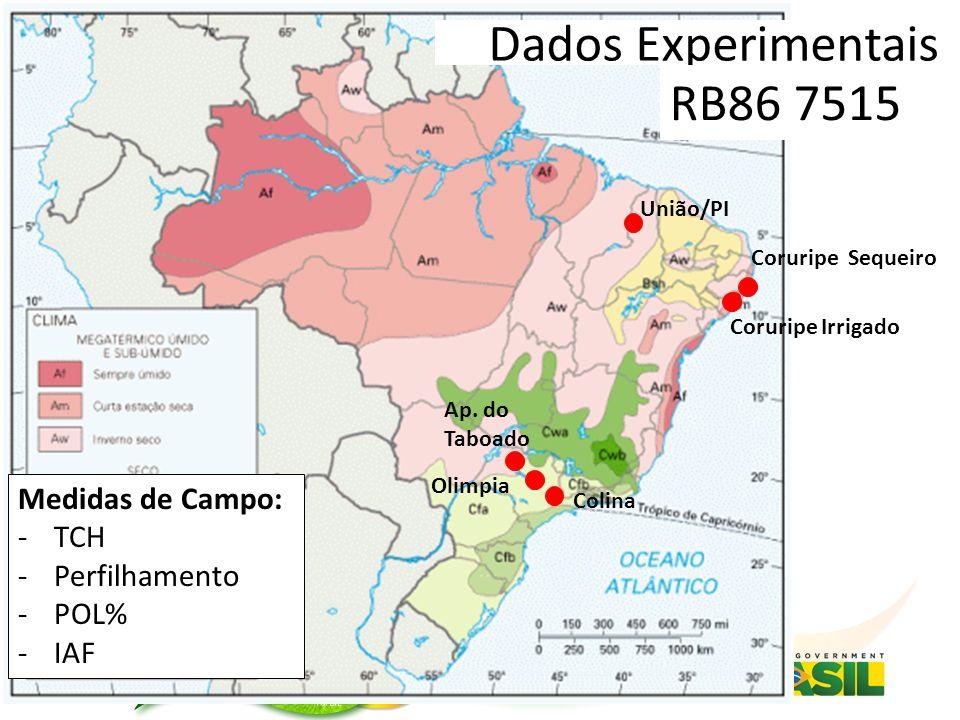 Coruripe Irrigado Coruripe Sequeiro Colina Dados Experimentais Olimpia Ap.