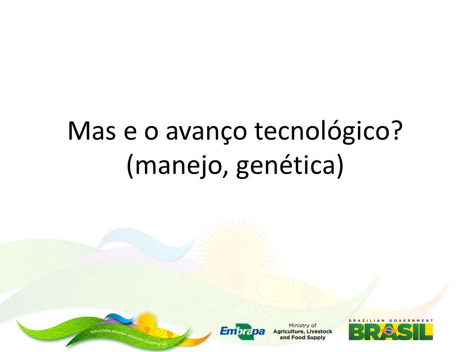 Mas e o avanço tecnológico? (manejo, genética)