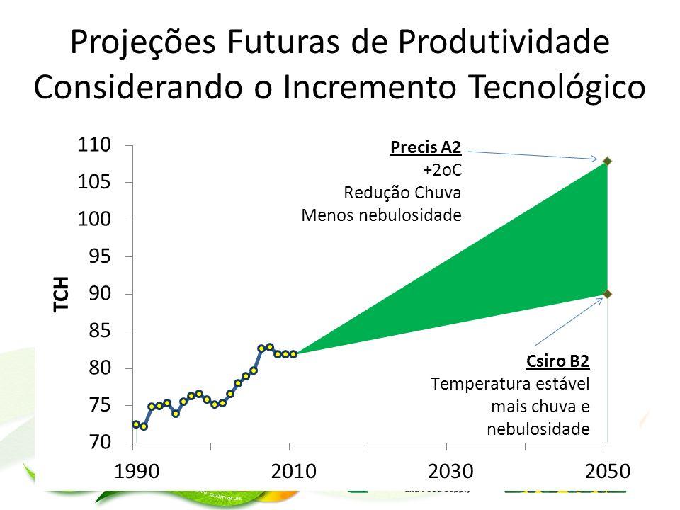 Projeções Futuras de Produtividade Considerando o Incremento Tecnológico
