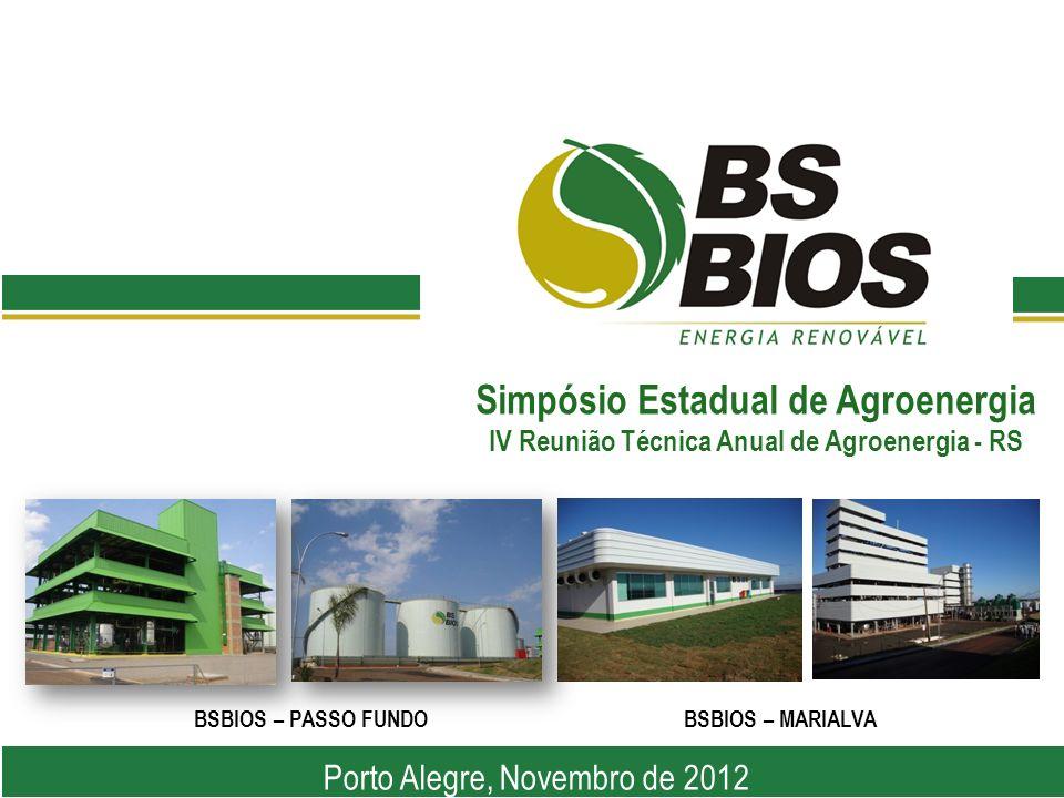 Simpósio Estadual de Agroenergia IV Reunião Técnica Anual de Agroenergia - RS Porto Alegre, Novembro de 2012 BSBIOS – PASSO FUNDOBSBIOS – MARIALVA
