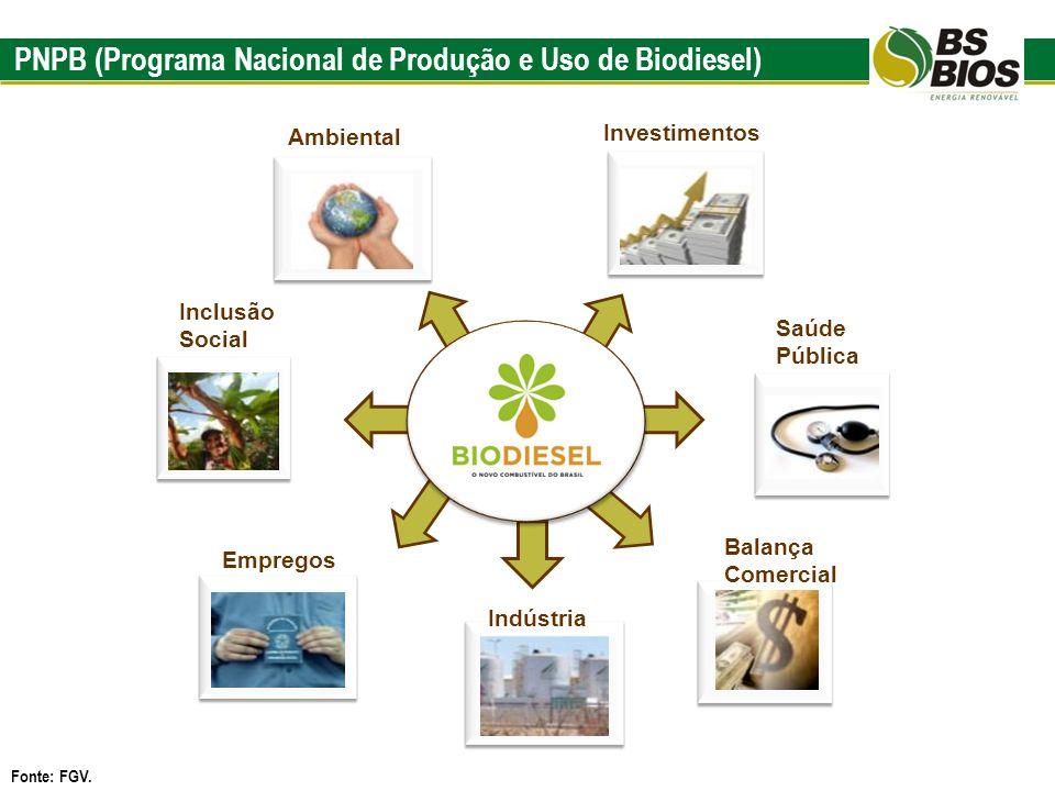 PNPB (Programa Nacional de Produção e Uso de Biodiesel) Fonte: FGV. Empregos Indústria Balança Comercial Ambiental Saúde Pública Investimentos Inclusã