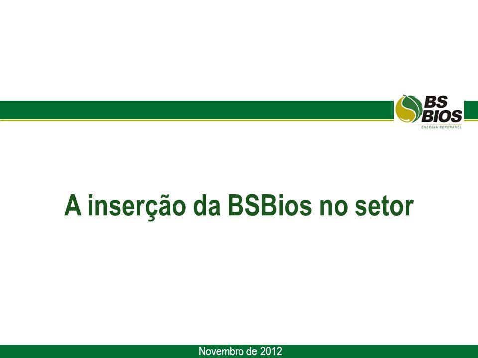 A inserção da BSBios no setor Novembro de 2012