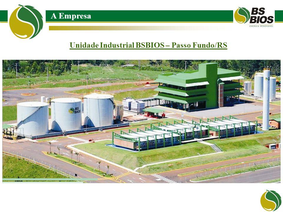 A Empresa Unidade Industrial BSBIOS – Passo Fundo/RS