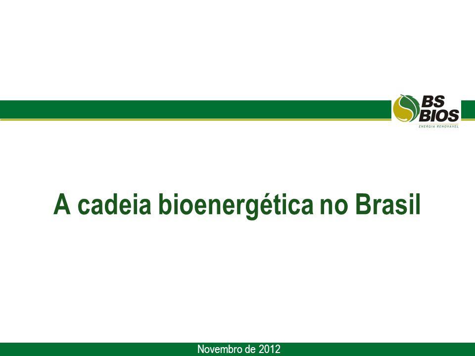 A cadeia bioenergética no Brasil Novembro de 2012