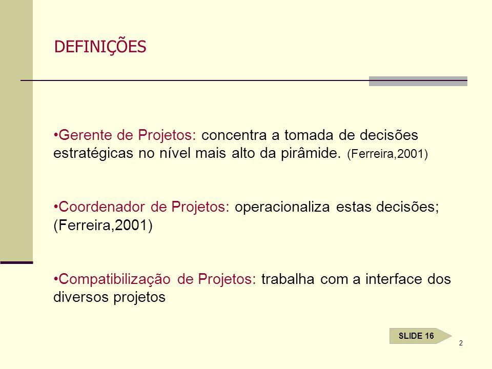 2 DEFINIÇÕES Gerente de Projetos: concentra a tomada de decisões estratégicas no nível mais alto da pirâmide. (Ferreira,2001) Coordenador de Projetos:
