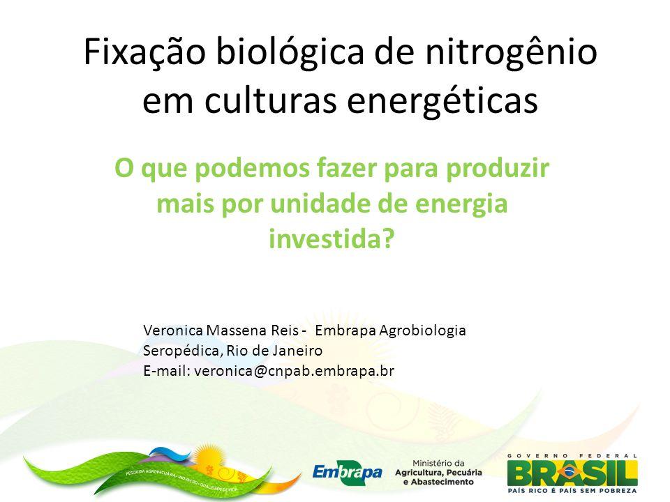 Fixação biológica de nitrogênio em culturas energéticas O que podemos fazer para produzir mais por unidade de energia investida.