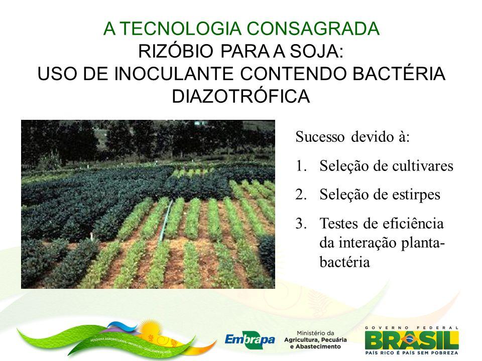 A TECNOLOGIA CONSAGRADA RIZÓBIO PARA A SOJA: USO DE INOCULANTE CONTENDO BACTÉRIA DIAZOTRÓFICA Sucesso devido à: 1.Seleção de cultivares 2.Seleção de estirpes 3.Testes de eficiência da interação planta- bactéria