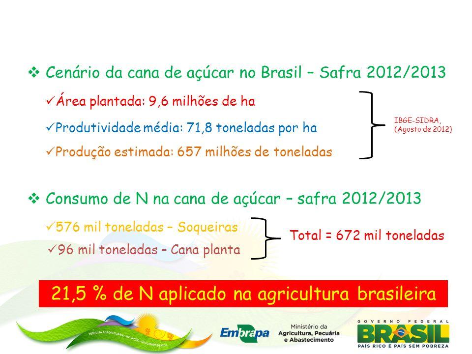 Cenário da cana de açúcar no Brasil – Safra 2012/2013 Área plantada: 9,6 milhões de ha Produtividade média: 71,8 toneladas por ha Produção estimada: 657 milhões de toneladas IBGE-SIDRA, (Agosto de 2012) Consumo de N na cana de açúcar – safra 2012/2013 576 mil toneladas – Soqueiras 21,5 % de N aplicado na agricultura brasileira Total = 672 mil toneladas 96 mil toneladas – Cana planta