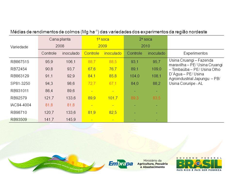 Médias de rendimentos de colmos (Mg ha -1 ) das variedades dos experimentos da região nordeste Variedade Cana planta 2008 1 a soca 2009 2 a soca 2010 ControleinoculadoControleinoculadoControleinoculadoExperimentos RB86751595,9106,188,788,593,195,7 Usina Cruangi – Fazenda maravilha – PE/ Usina Cruangi – Timbaúba – PE/ Usina Olho D`Água – PE/ Usina Agroindustrial Japungu – PB/ Usina Coruripe - AL RB7245490,893,767,676,789,1109,0 RB86312991,192,984,185,8104,0108,1 SP81-325094,398,672,767,184,088,2 RB93101186,489,6---- RB92579121,7133,689,9101,789,383,5 IAC94-400481,8 ---- RB98710120,7133,681,982,5-- RB93509141,7145,9----