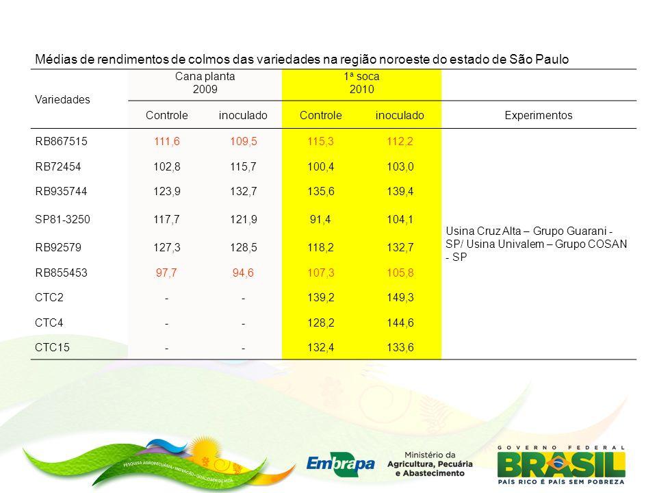 Médias de rendimentos de colmos das variedades na região noroeste do estado de São Paulo Variedades Cana planta 2009 1 a soca 2010 ControleinoculadoControleinoculadoExperimentos RB867515111,6109,5115,3112,2 Usina Cruz Alta – Grupo Guarani - SP/ Usina Univalem – Grupo COSAN - SP RB72454102,8115,7100,4103,0 RB935744123,9132,7135,6139,4 SP81-3250117,7121,991,4104,1 RB92579127,3128,5118,2132,7 RB85545397,794,6107,3105,8 CTC2--139,2149,3 CTC4--128,2144,6 CTC15--132,4133,6