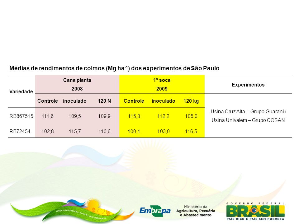 Médias de rendimentos de colmos (Mg ha -1 ) dos experimentos de São Paulo Variedade Cana planta 2008 1ª soca 2009 Experimentos Controleinoculado120 NControleinoculado120 kg Usina Cruz Alta – Grupo Guarani / Usina Univalem – Grupo COSAN RB867515111,6109,5109,9115,3112,2105,0 RB72454102,8115,7110,6100,4103,0116,5