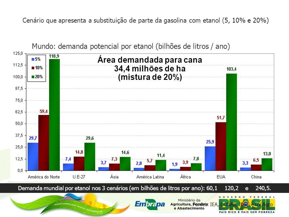 Cenário que apresenta a substituição de parte da gasolina com etanol (5, 10% e 20%) Mundo: demanda potencial por etanol (bilhões de litros / ano) Área demandada para cana 34,4 milhões de ha (mistura de 20%) Demanda mundial por etanol nos 3 cenários (em bilhões de litros por ano): 60,1 120,2 e 240,5.