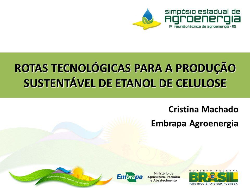 ROTAS TECNOLÓGICAS PARA A PRODUÇÃO SUSTENTÁVEL DE ETANOL DE CELULOSE Cristina Machado Embrapa Agroenergia