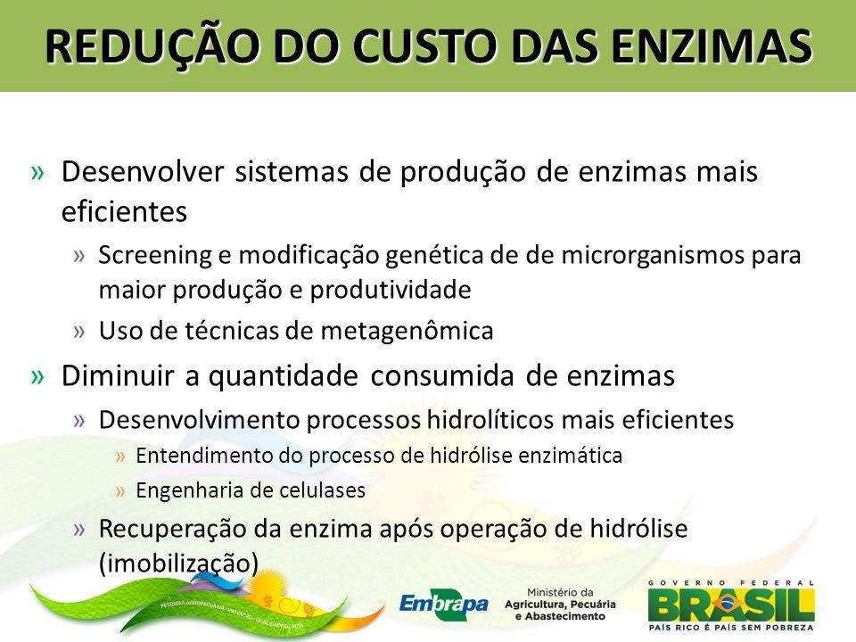 REDUÇÃO DO CUSTO DAS ENZIMAS »Desenvolver sistemas de produção de enzimas mais eficientes »Screening e modificação genética de de microrganismos para