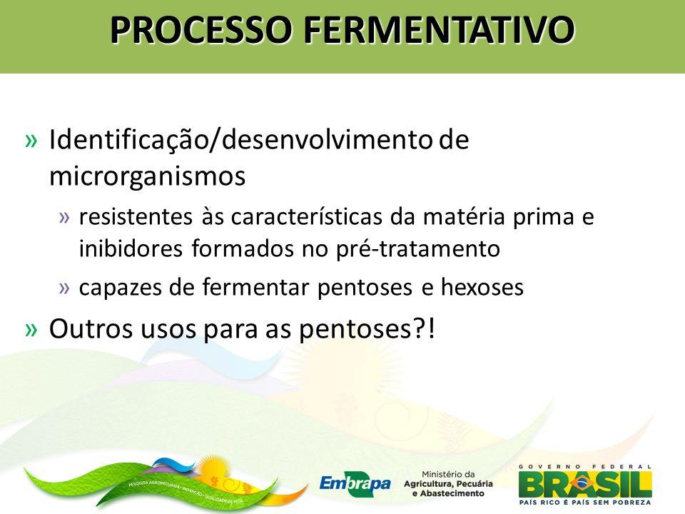 PROCESSO FERMENTATIVO »Identificação/desenvolvimento de microrganismos »resistentes às características da matéria prima e inibidores formados no pré-t