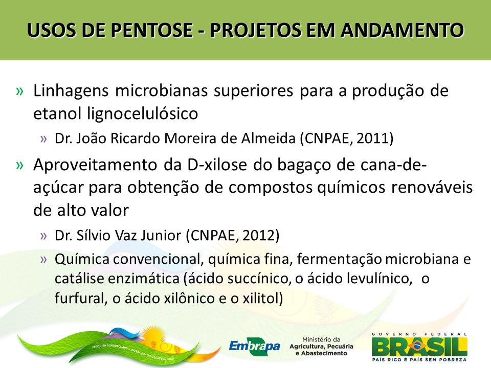 USOS DE PENTOSE - PROJETOS EM ANDAMENTO »Linhagens microbianas superiores para a produção de etanol lignocelulósico »Dr. João Ricardo Moreira de Almei