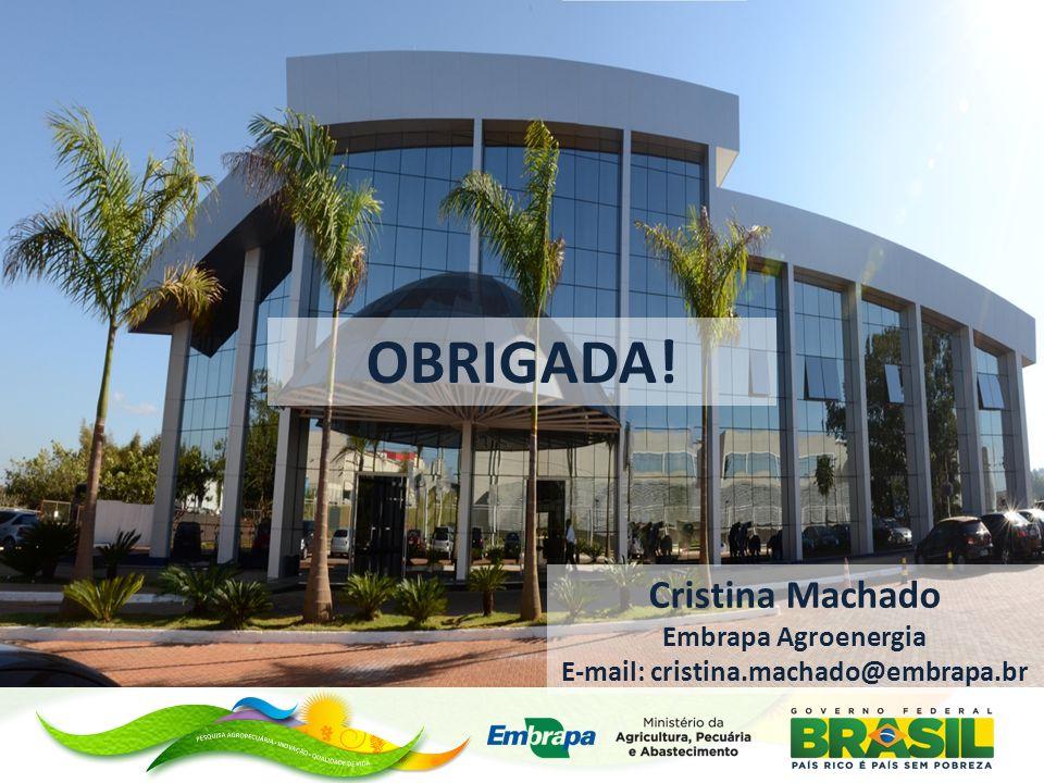 OBRIGADA! Cristina Machado Embrapa Agroenergia E-mail: cristina.machado@embrapa.br