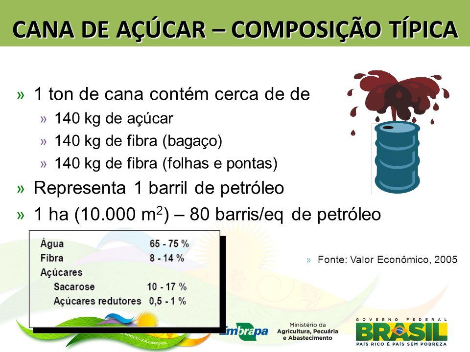 CANA DE AÇÚCAR – COMPOSIÇÃO TÍPICA » 1 ton de cana contém cerca de de » 140 kg de açúcar » 140 kg de fibra (bagaço) » 140 kg de fibra (folhas e pontas) » Representa 1 barril de petróleo » 1 ha (10.000 m 2 ) – 80 barris/eq de petróleo » Fonte: Valor Econômico, 2005
