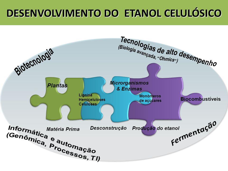 Plantas Matéria Prima Desconstrução Monômeros de açúcares Biocombustíveis Produção do etanol Microrganismos & Enzimas Lignina Hemiceluloses Celuloses
