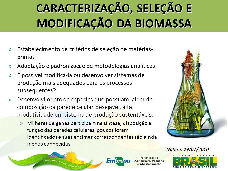 CARACTERIZAÇÃO, SELEÇÃO E MODIFICAÇÃO DA BIOMASSA »Estabelecimento de critérios de seleção de matérias- primas »Adaptação e padronização de metodologi