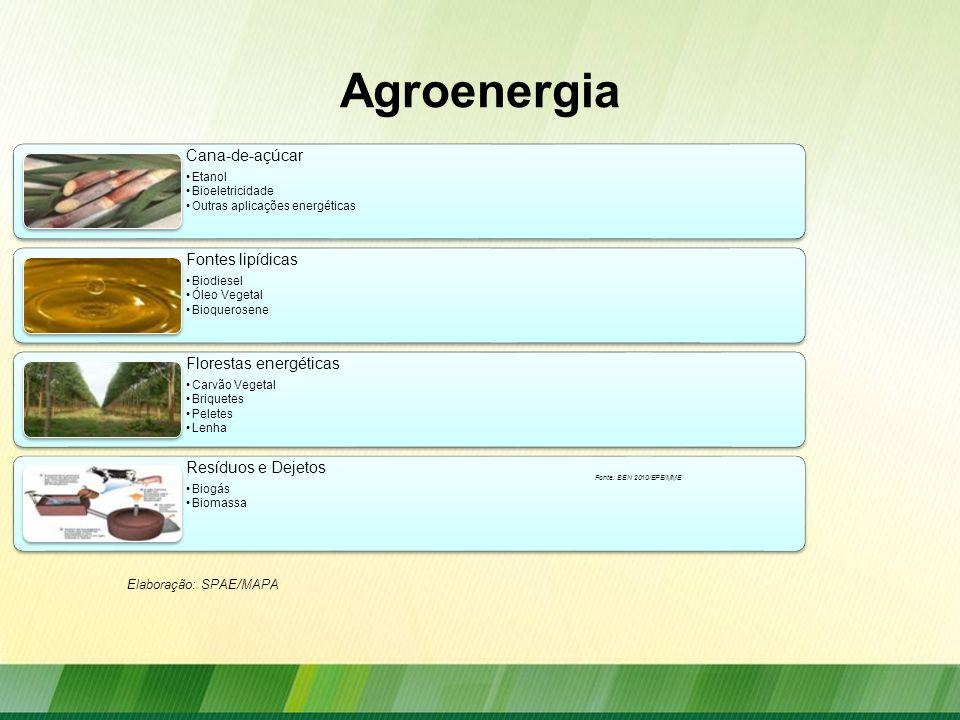 Ações do MAPA Defesa da agroenergia nos foros internacionais e promoção internacional dos biocombustíveis: –ISO (International Organization for Standardization) –GBEP (Global Bioenergy Partnership) –ONU (Organização das Nações Unidas) –Mercosul –CAS (Conselho Agrícola do Sul) –OMC (Organização Mundial do Comércio) –OIA (Organização Internacional do Açúcar)
