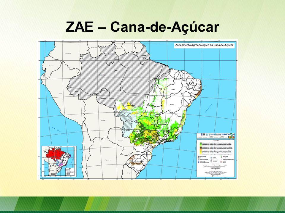 Resumo das áreas potenciais para expansão da cana-de-açúcar