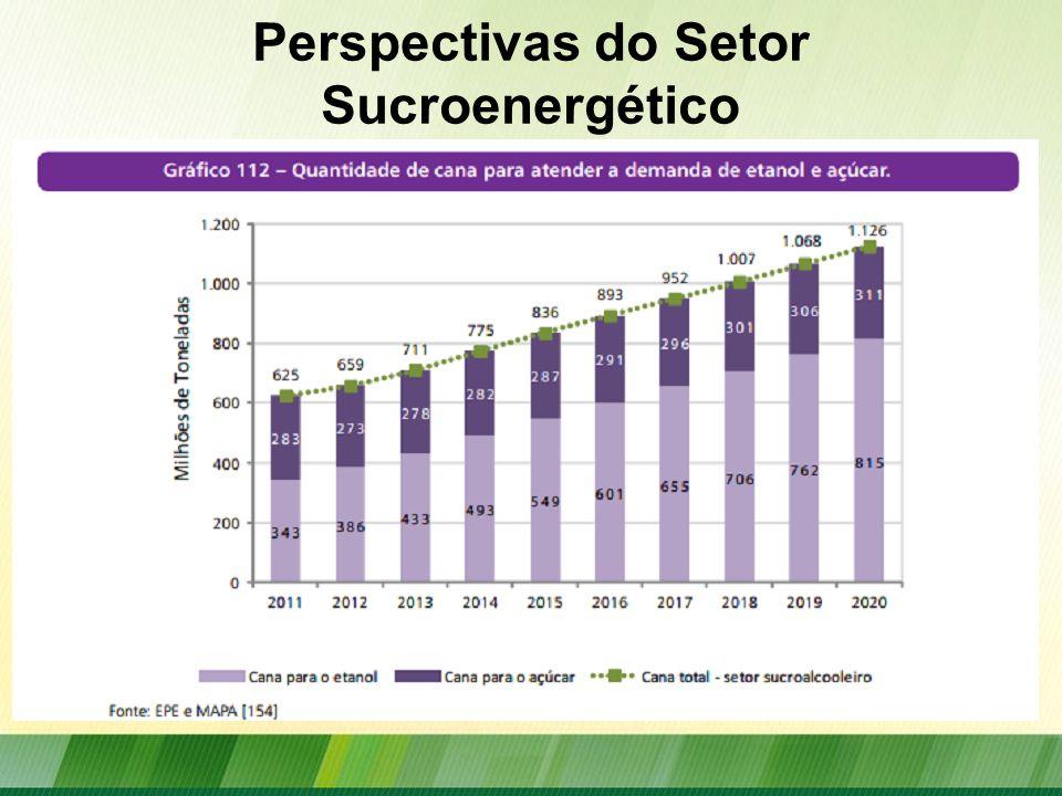 Perspectivas do Setor Sucroenergético