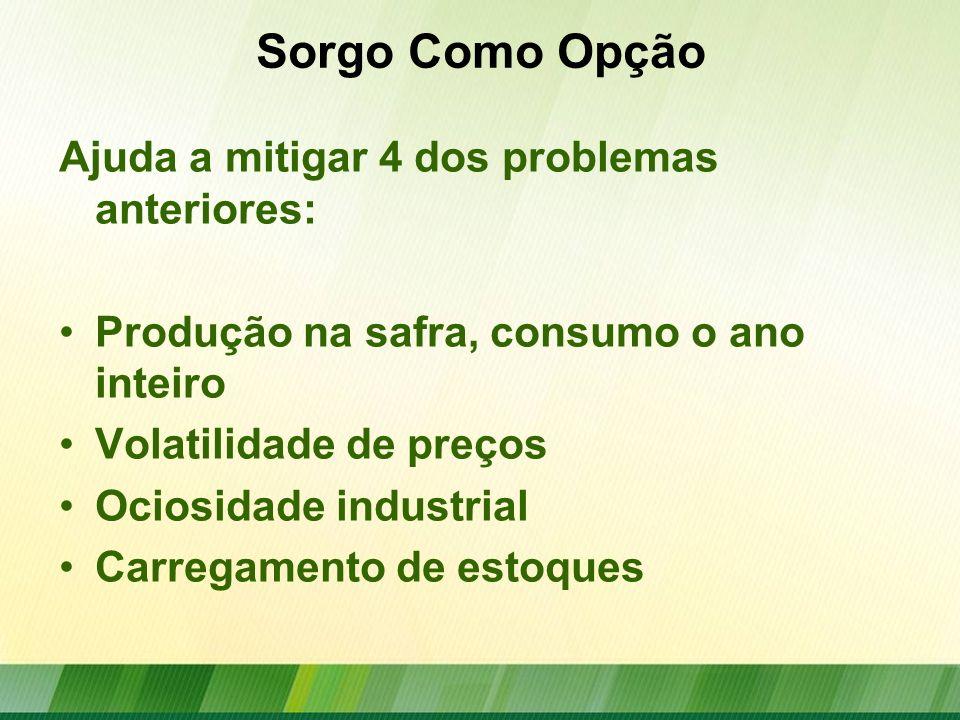 Financiamento para Sorgo Previsão de R$ 270 milhões baseada no cultivo de 100 mil hectares na safra 2012/13 (custo de R$ 2.700/ha).