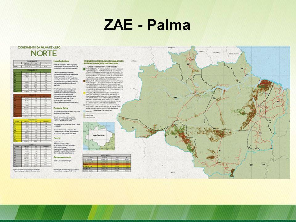 Participação da Agricultura Familiar no PNPB Fonte: Boletim MME, julho 2010