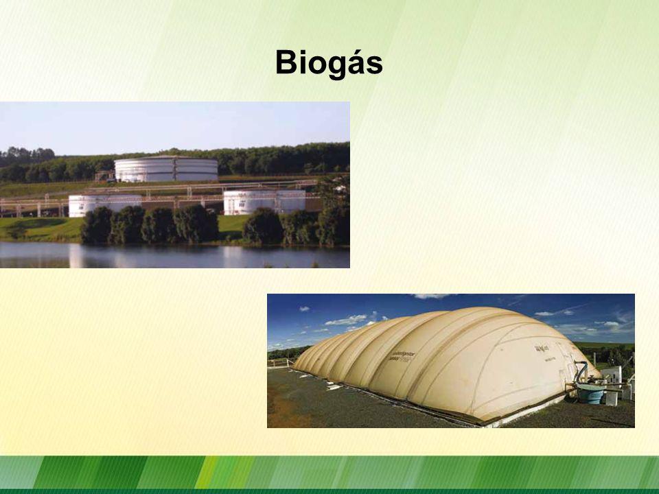 Utilização do Biogás Geração de energia elétrica, térmica Combustível em substituição do gás natural ou do gás liquefeito de petróleo (GLP)