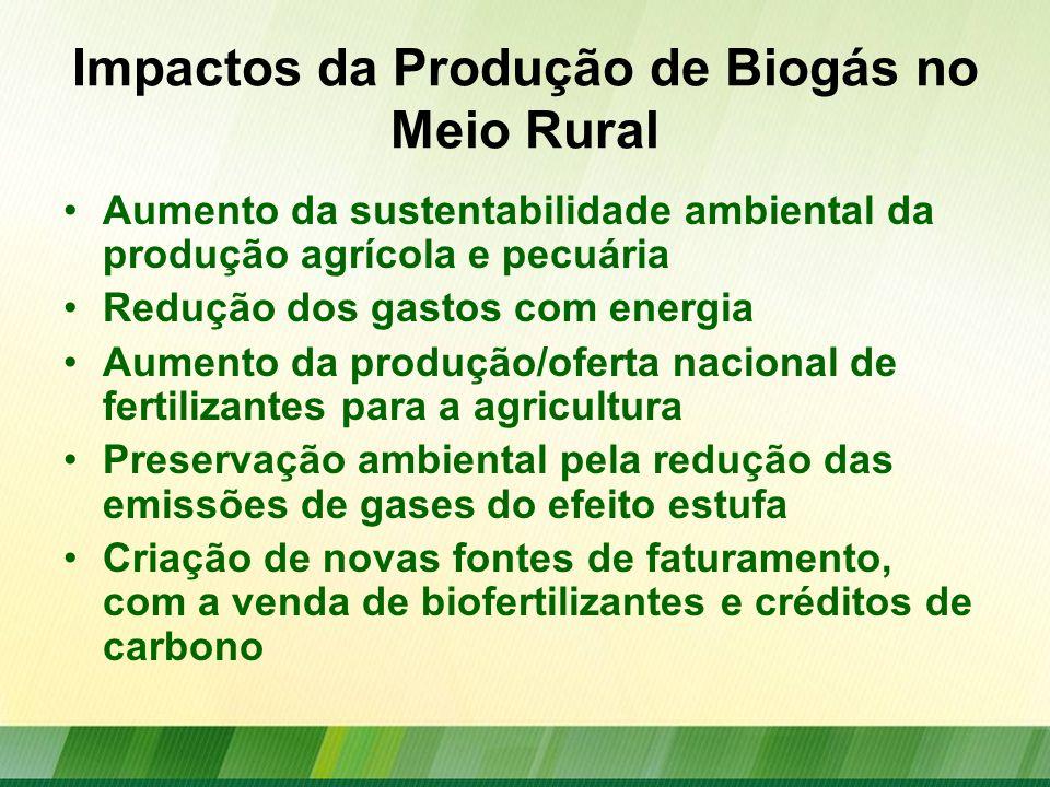 Potencial de Produção Efluentes domésticos Efluentes industriais Resíduos sólidos urbanos Resíduos agropecuários Aproveitamento de biomassa Culturas energéticas