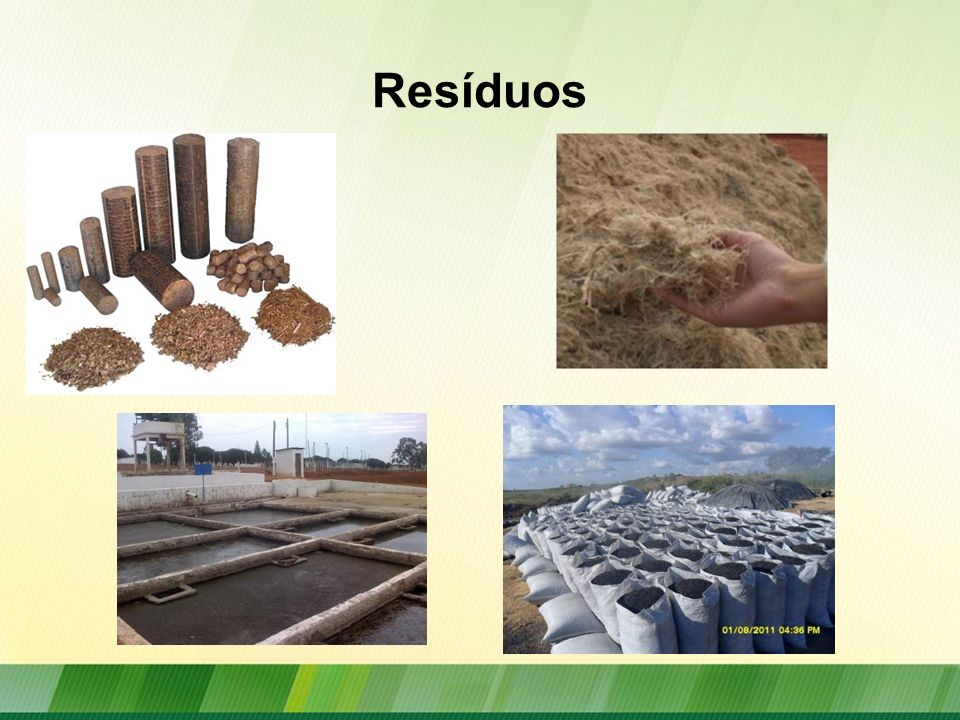 Potencial de Resíduos Agroindústria Montantes estimados de res í duos s ó lidos e efluentes gerados pelo setor agrosilvopastoril e potencial energ é tico desses res í duos.