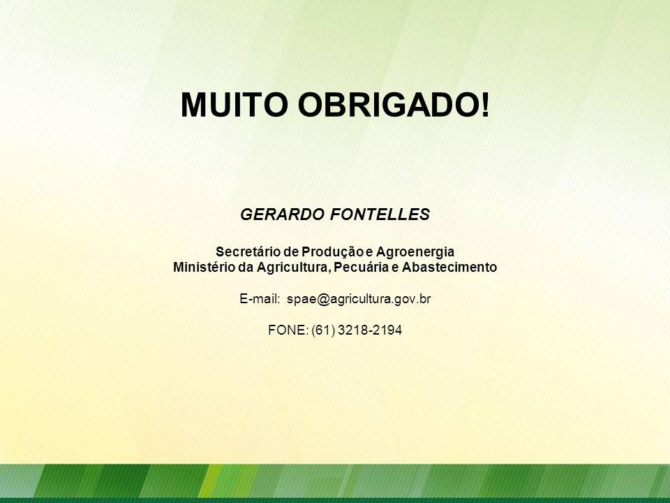 MUITO OBRIGADO! GERARDO FONTELLES Secretário de Produção e Agroenergia Ministério da Agricultura, Pecuária e Abastecimento E-mail: spae@agricultura.go